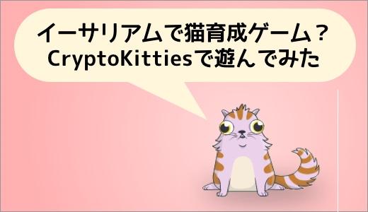 イーサリアムで猫育成ゲーム?CryptoKittiesの遊び方を解説